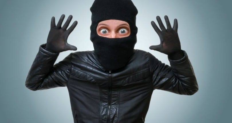 How To Beat The Burglars This Autumn
